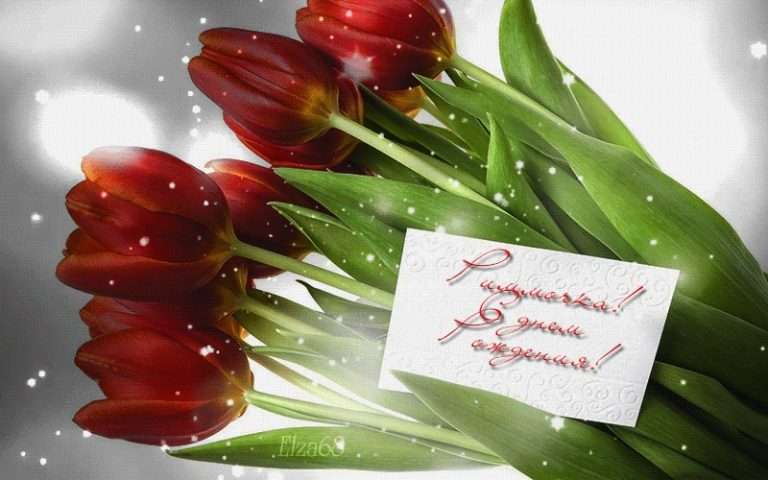 картинки поздравления с днем рождения тюльпаны просторные лифты, удобные
