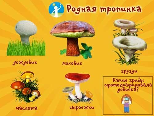 Рисование на тему грибы и ягоды 017