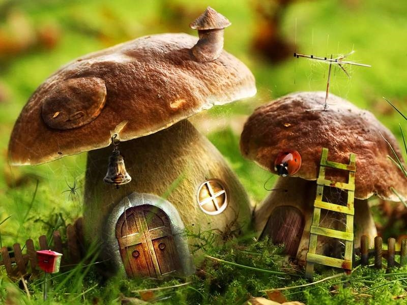 Рисование на тему грибы и ягоды 018