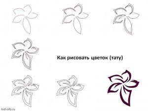 Рисовать красивые цветы поэтапно карандашом   подборка 020