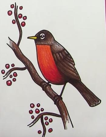Рисуем перелетных птиц с детьми   рисунки 023