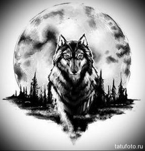 Рисунки волка воющего на луну   подборка 027
