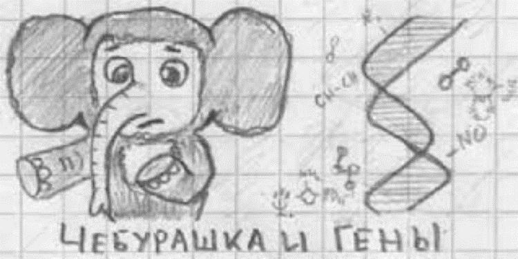 Рисунки карандашом легкие и смешные 024