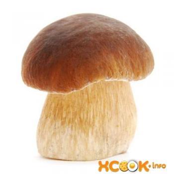 Рисунок гриба белого гриба для детей 024