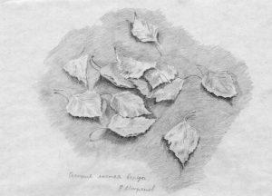 Рисунок карандашом осень листья 022