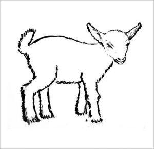 Рисунок козленка для детей 029