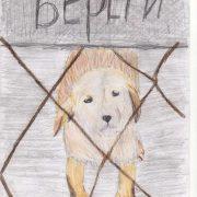 Рисунок на тему бездомные животные 027