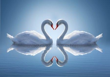 Рисунок на тему лебединое озеро 006