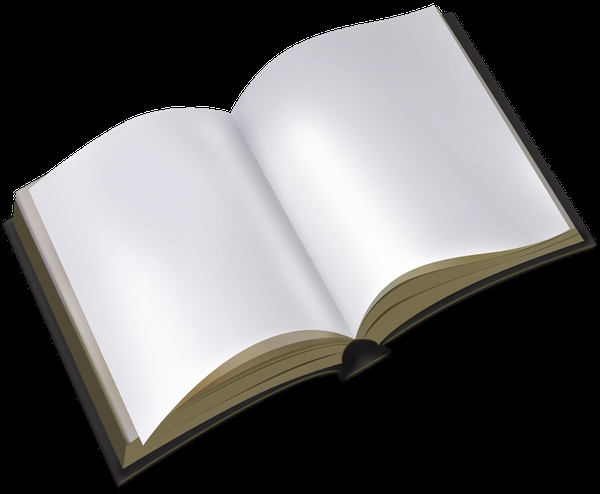 Рисунок раскрытой книги с пером 008