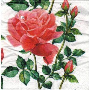 Розы для декупажа на белом фоне   картинки (15)