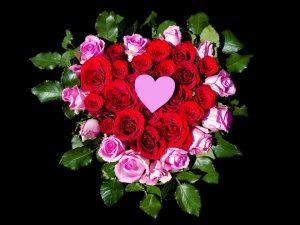 Розы и сердце картинки и фото 028