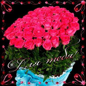 Розы картинки для друзей   подборка018