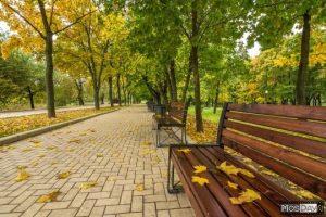 Россия осень фото и картинки подборка014