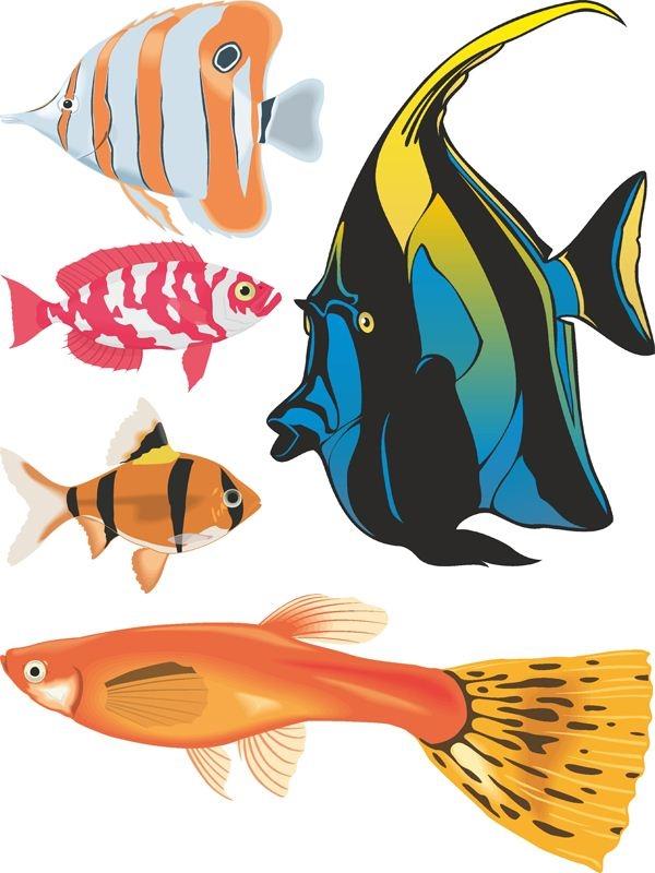 Рыбка на прозрачном фоне картинки для детей 022