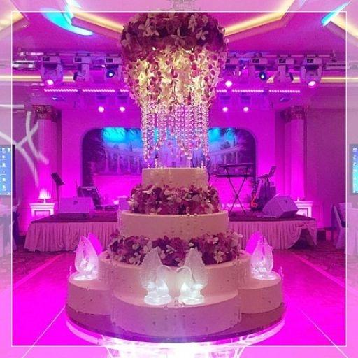 Самый большой торт и красивый   фото 009