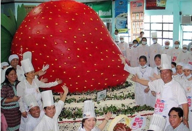 Самый большой торт и красивый   фото 014
