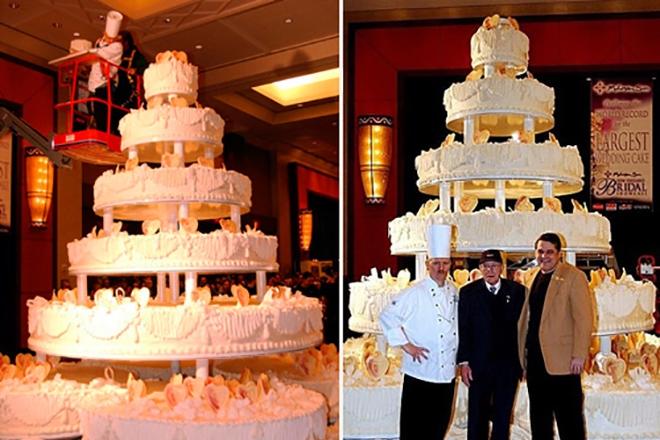 Самый большой торт и красивый   фото 017