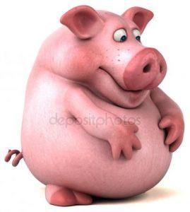 Свинья в очках картинки и фото 021