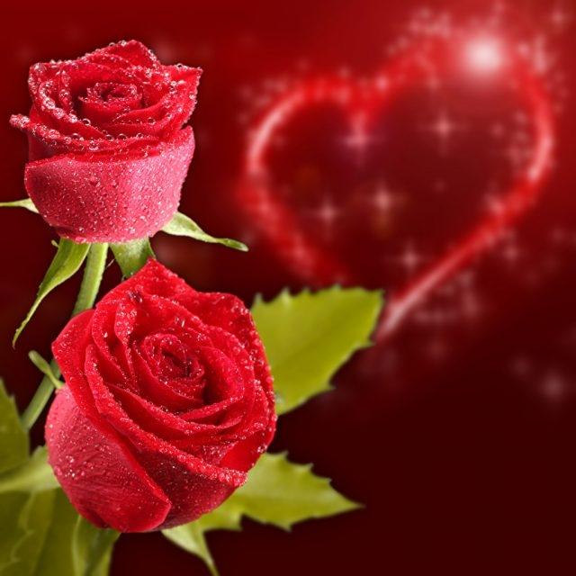 Сердце из роз картинки и фото   подборка 007