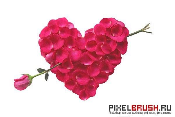 Сердце из роз картинки и фото   подборка 011