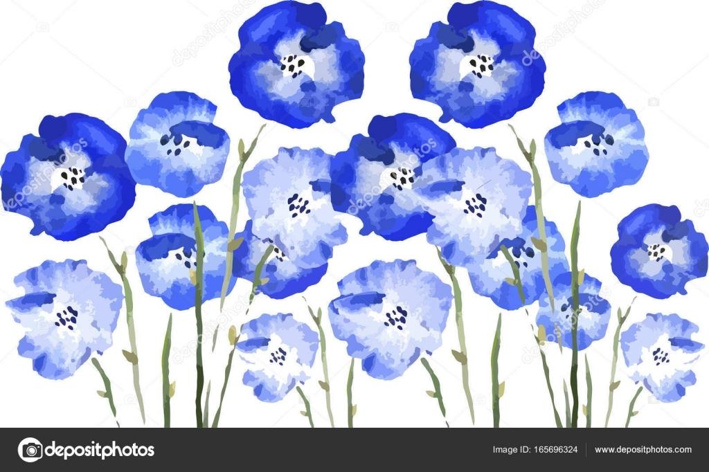 Синие цветы на белом фоне   фото 002