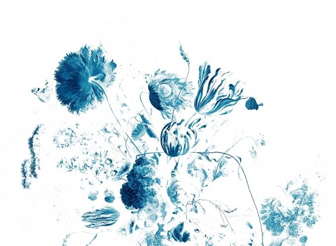 Синие цветы на белом фоне   фото 003