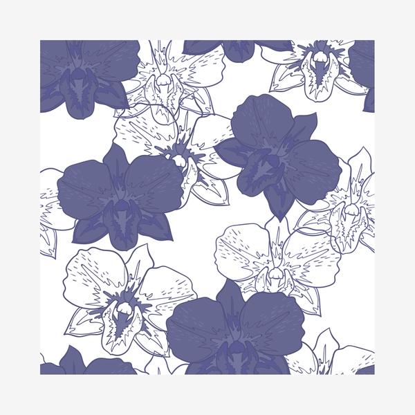 Синие цветы на белом фоне   фото 008