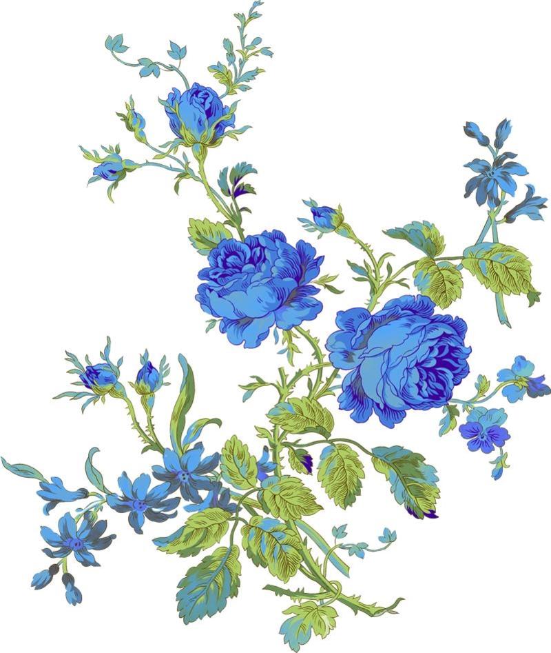 Синие цветы на белом фоне   фото 015