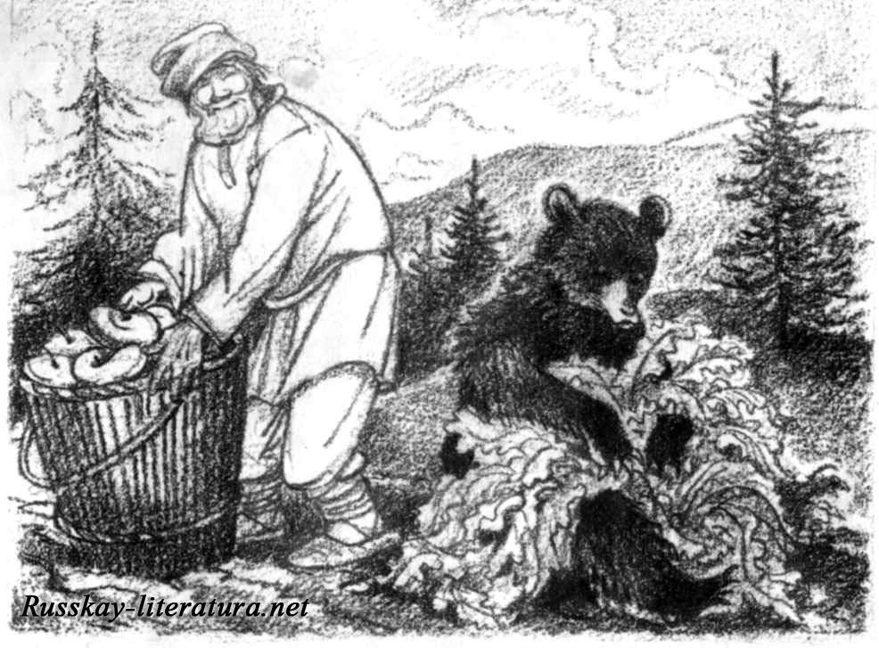 Сказку мужик и медведь читать ребенку 023