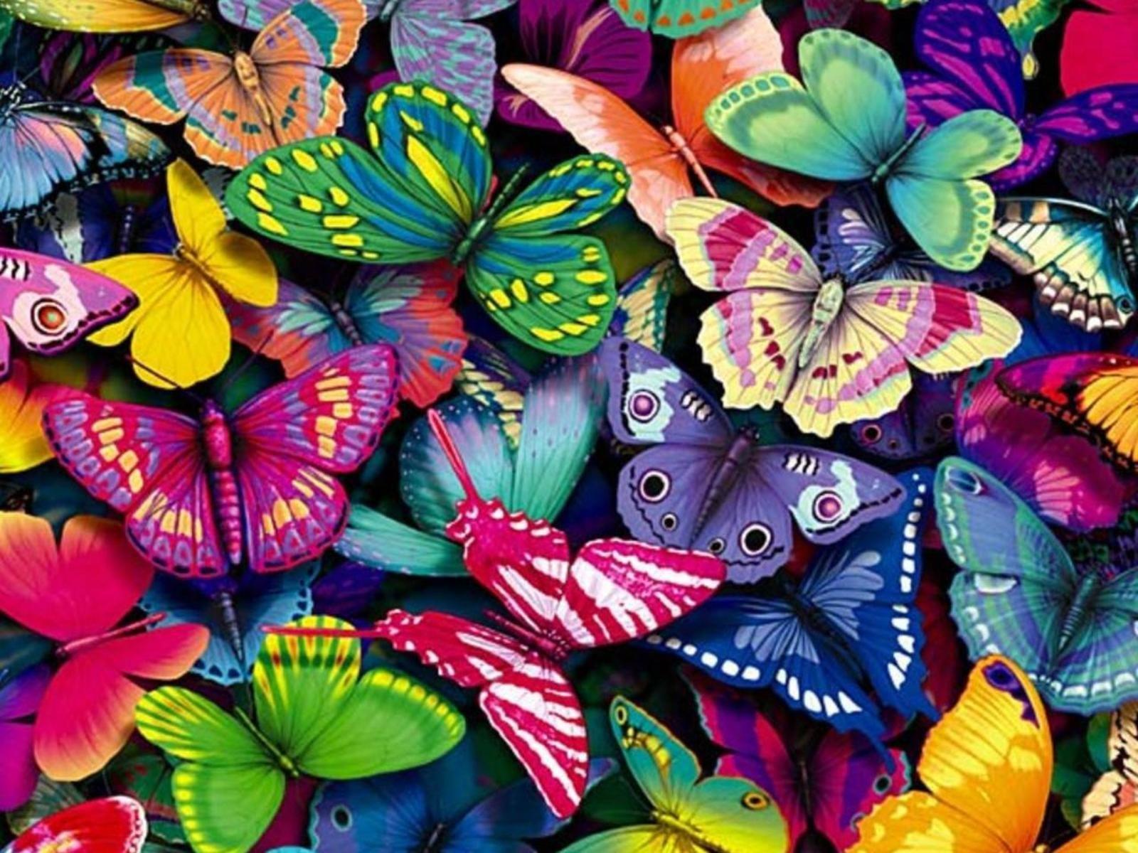 Скачать бесплатно обои бабочки на рабочий стол   подборка (17)