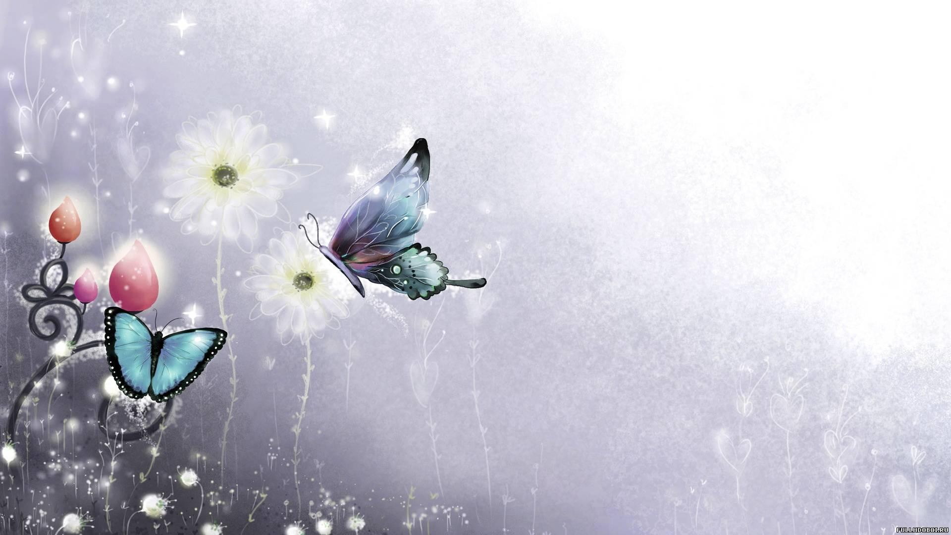 Скачать бесплатно обои бабочки на рабочий стол   подборка (2)