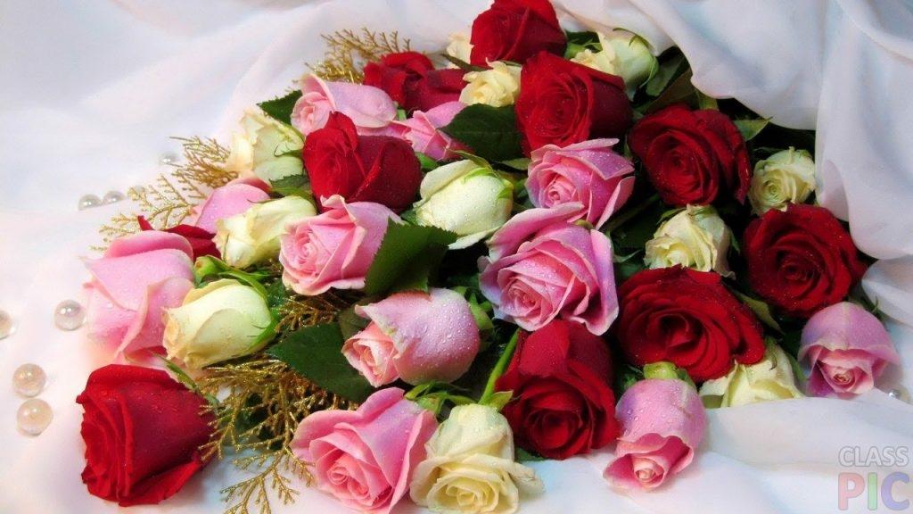 Скачать картинки белые розы   подборка 006