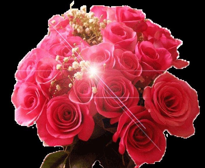 Скачать картинки белые розы   подборка 013