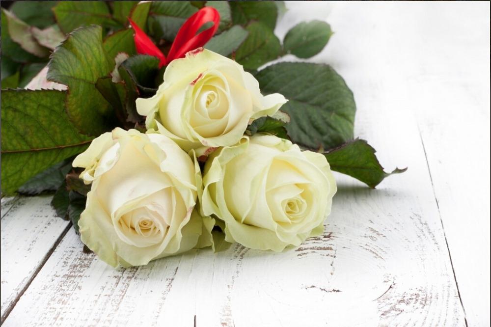 Скачать картинки белые розы   подборка 020