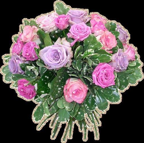 Скачать картинки белые розы   подборка 021
