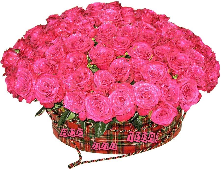 Скачать картинки белые розы   подборка 023