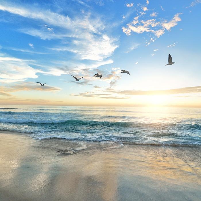 Скачать картинки красивые море   подборка020