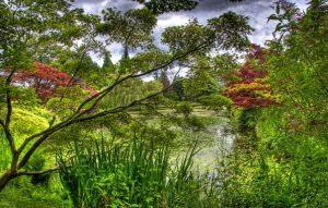 Скачать картинки лето и природа   очень красивые028
