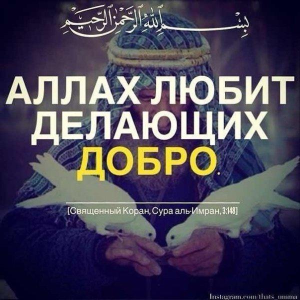 Скачать картинки про Аллаха с надписями   подборка фото (11)
