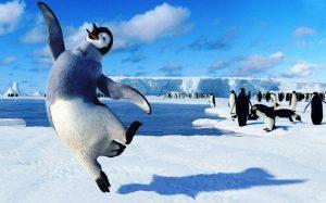 Скачать картинки с пингвинами прикольные 022