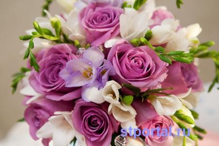 Скачать красивые фото цветов в высоком качестве   сборка (18)
