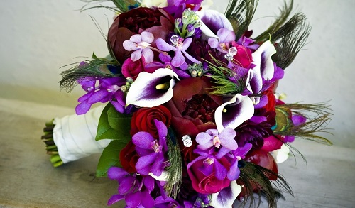 Скачать красивые фото цветов в высоком качестве   сборка (21)