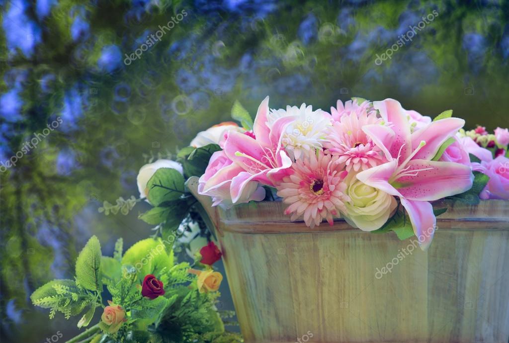 Скачать красивые фото цветов в высоком качестве   сборка (23)