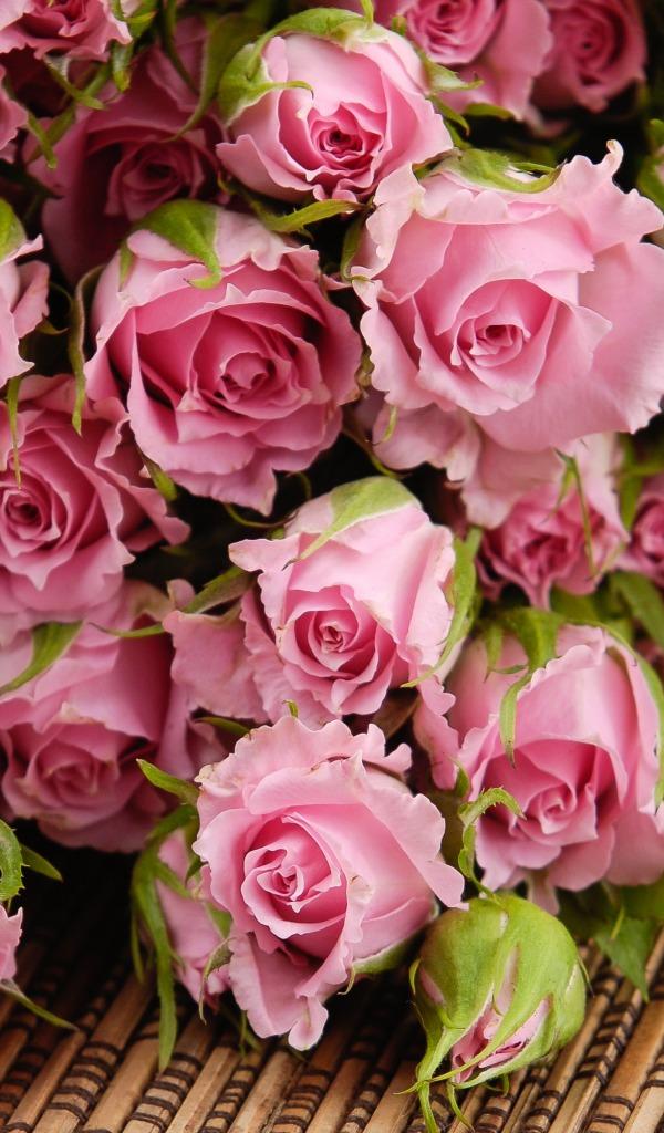 Скачать красивые фото цветов в высоком качестве   сборка (6)