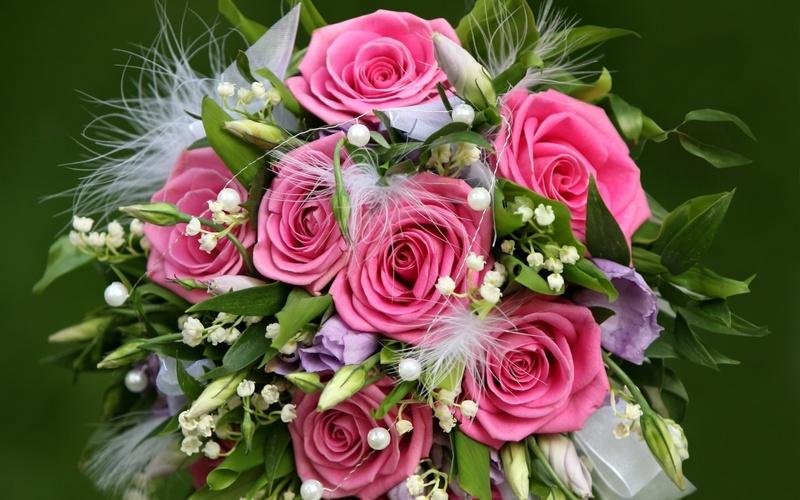 Скачать красивые фото цветов в высоком качестве   сборка (7)