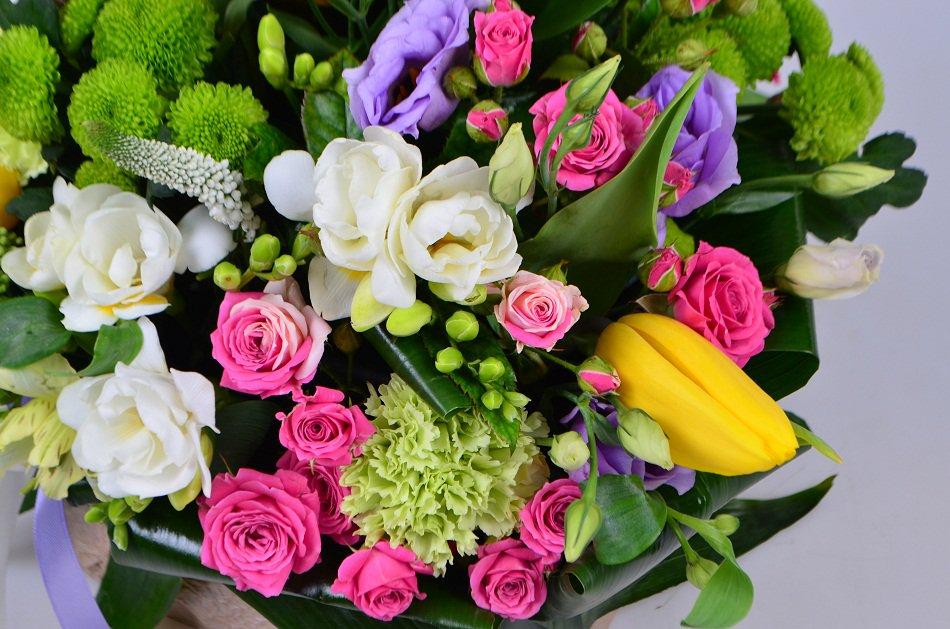 Скачать красивые фото цветов в высоком качестве   сборка (9)