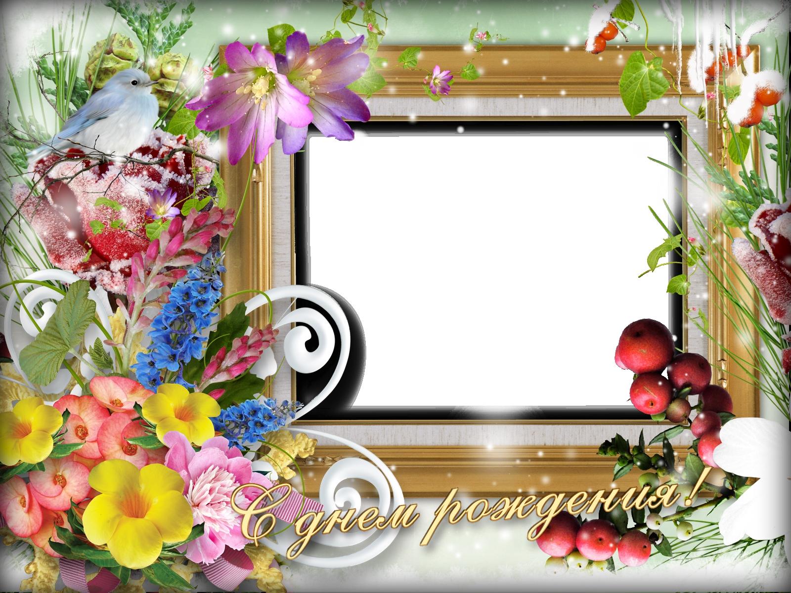 Открытки с днем рождения на прозрачном фоне с фото