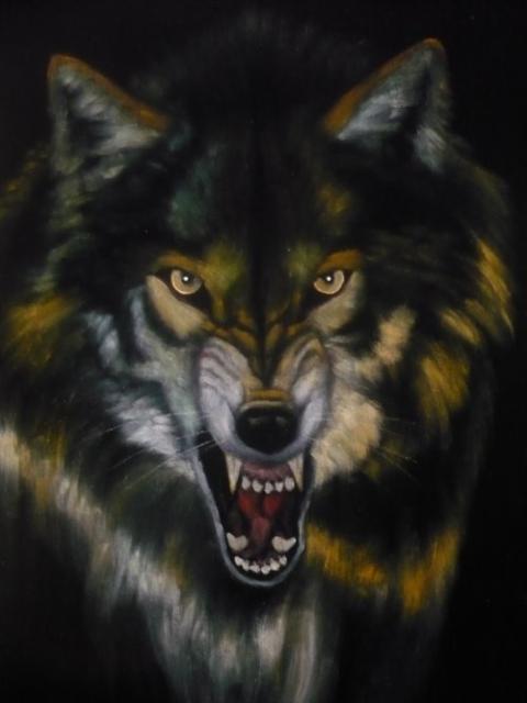 Скачать фото оскал волка бесплатно   подборка 001