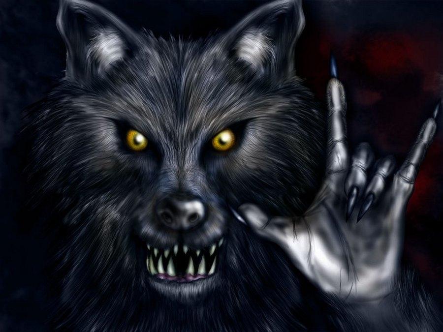 Скачать фото оскал волка бесплатно   подборка 016