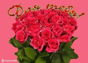 Скачать фото роз красивых 027
